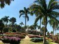 Doi Tung Garden_๑๙๐๒๑๑_0021